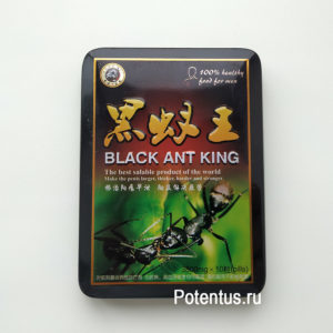Купить Королевский черный муравей недорого